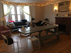 Beautiful 3 Bedroom Apartment for Sublet in Heart of Downtown