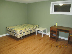 A clean and quiet basement room by WEM (male only)