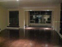 Bright and Sunny Lakeview 2 Bedroom Condo