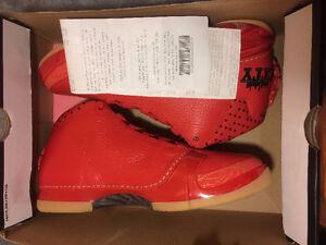 Air Jordan, Flu Game, Jordan 12