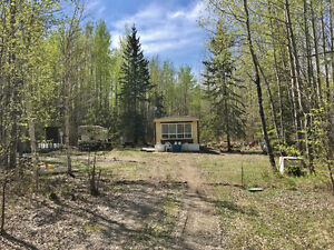 5 Treed acres with Mobile – N of Seba