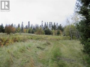 145 Acres! Brook running through property,great for home or camp