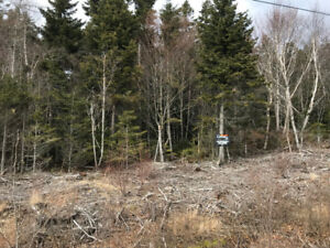 Affordable 1.8 Acre Lot Campobello Island - New Price!!!