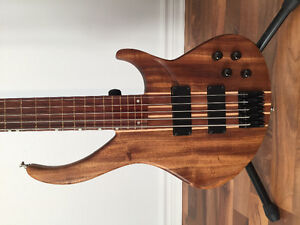 Bass Peavey Grind 5 strings Fretless