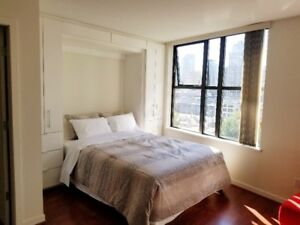 $1900 / 500ft2 - Studio plus den furnished, utilities inluded