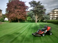 Grass Cutting Services - Mulch Laying - Spring Clean-ups
