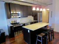 Upscale Furnished 2 Bed,2Bath Uptown Loft short term rent Oct 1