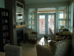 Go West to Vancouver to Avoid Winter - rent 2 Bdrm apt.