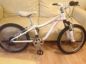 Kids Specialized Hotrock 20 inch wheels aluminium bike for 5-9 year olds