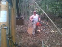 Wood split, power wash, power blow, lumberjack, handyman ..
