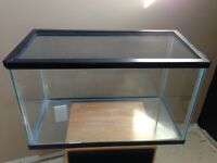 10 Gallon Reptile Terrarium with screen lid