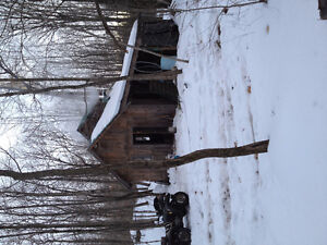 hunting camp and sugar bush Kingston Kingston Area image 4