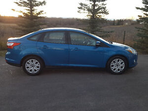 2012 Ford Focus SE                 Hail Sale!!!