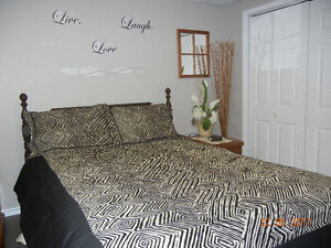Double Comforter,Pillow Shams and Bed Skirt