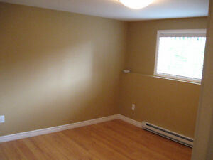 One bedroom basement apartment St. John's Newfoundland image 5