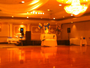 professional dj services / small wedding package Cambridge Kitchener Area image 7