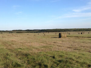 Running low on feed? Round Bales For Sale