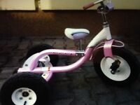 Trek trekster tricycle