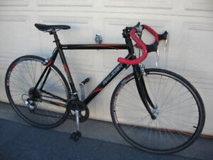 Raleigh Record Aluminum 14 Speed Road Bike