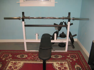 Northern Lights Olympic Bench with Bars, Plates and Tree