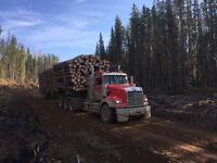Log Truck Driver Required Mackenzie Area, Camp Job