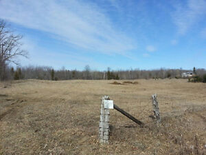 Affordable building lot within 40 mins of Kingston Kingston Kingston Area image 3