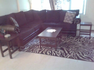 Sectional, carpet and pillows