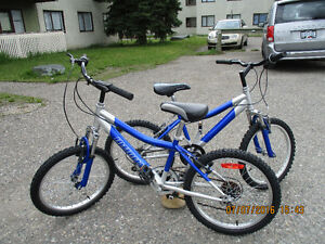 """Two Kid's """"Infinity Mountain Bikes for sale-$100.00 each"""