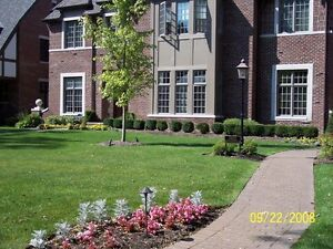 Complete landscaping Service.  Kitchener / Waterloo Kitchener Area image 6
