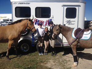 Horseback Riding Lessons Available