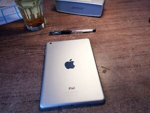 Excellent condition [iPad mini] looking for sale