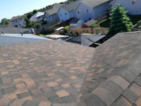 Need a new Roof? Or a repair due to the elements?