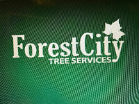 Forest City Tree Services- 20% Off Winter Sale