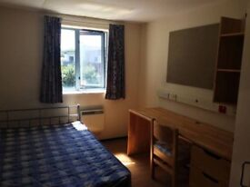 ** Students & Professionals accommodation **