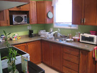 Beautiful 5 Bedroom Student Home on Tupper, Thorold (Group of 5)