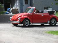 superbe beetle 1979