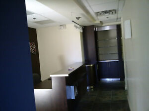 Well furnished high end hair salon Kitchener / Waterloo Kitchener Area image 2