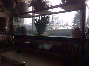 Hagen 130 Gal. Aquarium with stand and glass top. Prince George British Columbia image 2