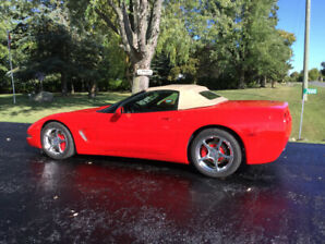 2004 Corvette Convertible - New Fall Pricing!