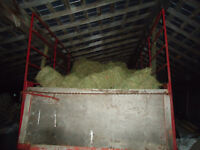 Small square bales of second cut hay, no rain,delivery available