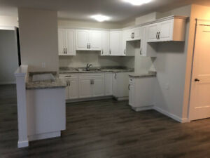 Bright New 2 Bed Suite