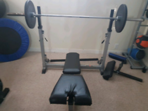 Re-upholstered Iron Man Olympic bench and weight