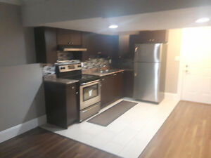 Beautiful New Basement in College Heights
