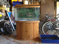 Two Bow Fronted Aquariums - 46g & 30g for sale