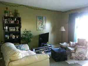Longterm roommate wanted in Riverview Sept.1st