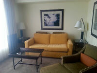 Furnished One Bedroom in the Financial District
