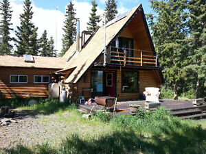 off grid, shores of Lake Laberge