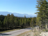 Crooked Tree Estates, Lot 20, Between Fairmont And Windermere
