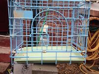 Carry cage for going to vets etc for all small animals