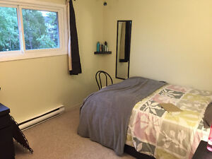 ROOM AVAILABLE JAN2017-APRIL2017 Kitchener / Waterloo Kitchener Area image 5